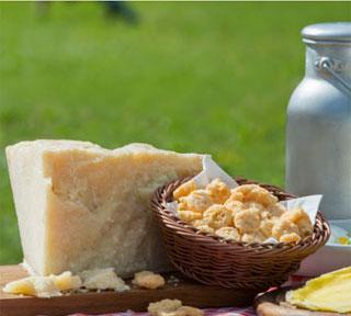 Granarolo entra nel settore degli snack al formaggio acquisendo il 30% della  San Lucio