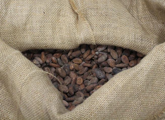 cacao-sacchetto