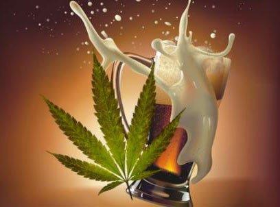 Legalizazione marijuana in Italia, quali possibili conseguenze sui consumi di alcolici