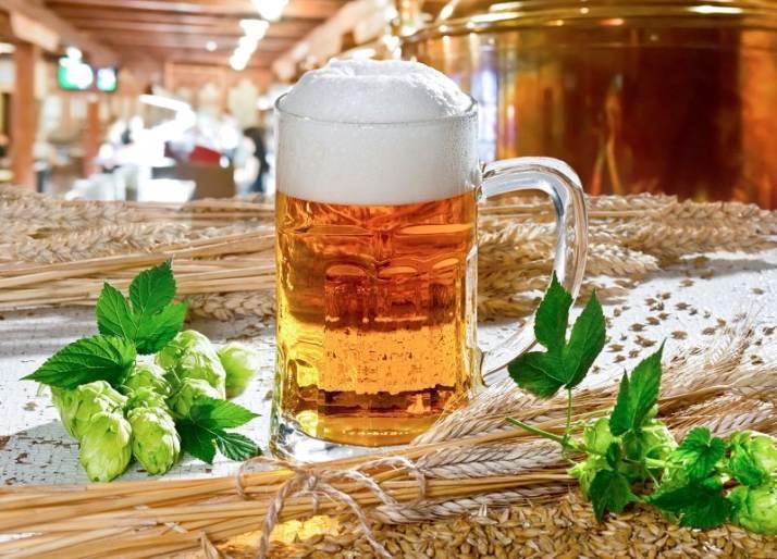 boccale birra luppolo malto