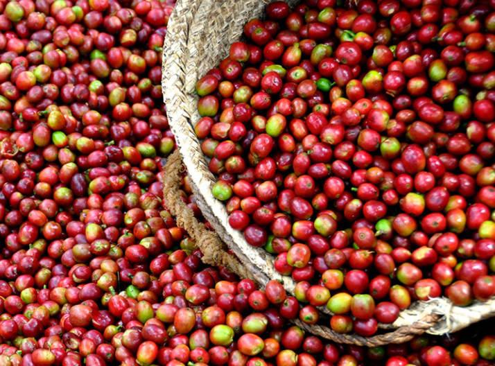 coffee-beans-bag