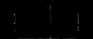 logo Distilleria Nardini SpA