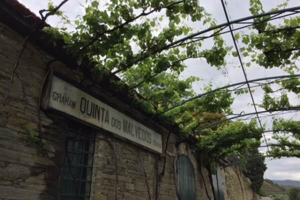 Graham Quinta Dos Malvedos