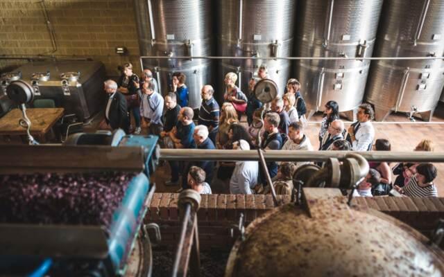 Mazzetti d'Altavilla – Distillazione – Foto Paolo Bernardotti