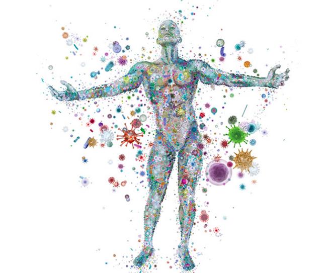 Cibo & Salute Enea Soluzioni Originali Sostenibilità Alimenti Migliorare Microbioma Microbi