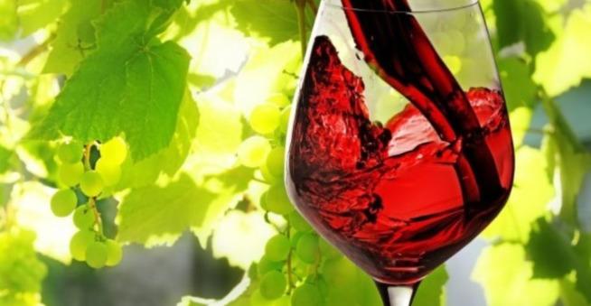 Mercato Vini Osservatorio Vino Uiv – Unione Italiana Vini Italiano Aumento Vendite Osservatorio Del Vino Vendite Vini Export
