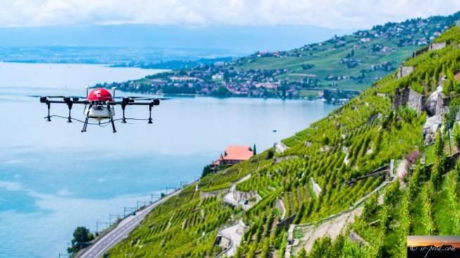 Utilizzo Spray Svizzera Esempio Precisione Droni Viticultura