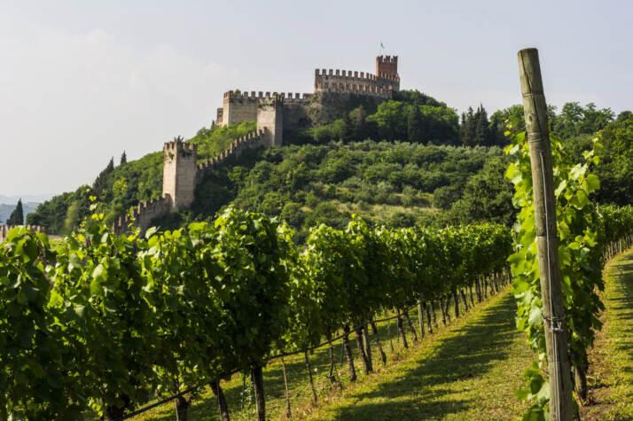 Borgo Rocca Sveva e vigne di Cantina di Soave