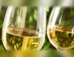 Pinot grigio Italia: produzione di 298 Mio di bottiglie nazionali, di cui 168 Mio delle Venezie