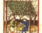L'ingrediente medievale che cambierà i vostri cocktail