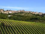 Il Brunello traina l'enoturismo a Montalcino, +113% in 5 anni