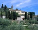 Gruppo Italiano Vini: donazione da 100.000 euro per l'ospedale di Verona per l'emergenza Coronavirus
