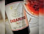 Caramino: il vino faro del Nord Piemonte simbolo della ricostruzione delle Colline Novaresi