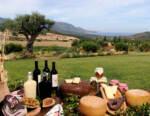 Sardegna Vini: in due mesi vendite ridotte del 68%. Proposte di intervento alla Regione