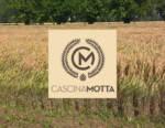 Birrificio Contadino Cascina Motta: la coltivazione dell'orzo distico per le sue birre