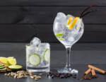 National Gin & Tonic Day: spazio ai migliori Gin Americani, protagonisti della craft revolution