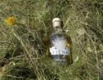 Liquore Fieno Marzadro: l'emozione di un raccolto in alta montagna