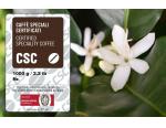 Cambia il mondo del caffè: CSC è vicina ai torrefattori e al mercato che premia l'eccellenza