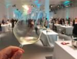 I migliori Lugana degustati all'evento Armonie Senza Tempo tra versatilità e longevità