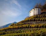 I Vigneti Terrazzati della Valtellina iscritti al Registro Nazionale dei Paesaggi Rurali Storici
