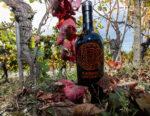 """9 di Dante Inferno, il vermouth """"divino"""" che parla alle nuove generazioni"""