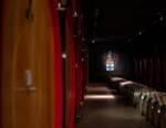 Ciacci Piccolomini d'Aragona: la magia di Montalcino tra Bike e Brunello