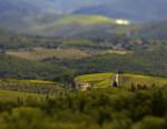 Tenute Piccini: storia di famiglia e visione, dalla Toscana a Shanghai
