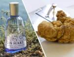 Gin Mare e Tartuflanghe, uniti per la creatività gastronomica