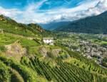 Valtellina in alto i calici, un libro per scoprire un territorio divino