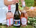 Schenk Italian Wineries bilancio 2020: fatturato in crescita a 118 Milioni € di cui 69% l'export