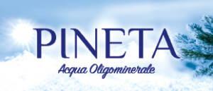 logo FONTI PINETA S.p.A.
