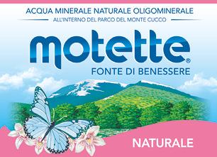 logo MOTETTE S.r.l.