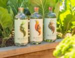 Seedlip: il primo distillato no-alcol per conquistare l'Italia con i suoi cocktail green