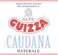 logo ALPE GUIZZA S.p.A.