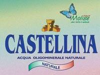logo CASTELLINA S.p.A.