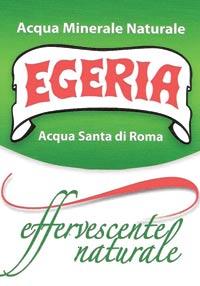 logo ACQUA SANTA DI ROMA S.r.l.