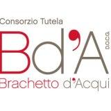 BRACHETTO Zelig social network