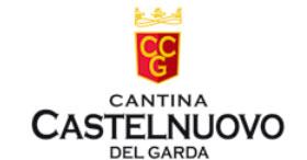 Bilancio Fatturato Cantina Castelnuovo Garda